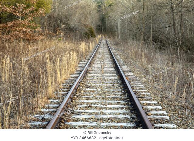 Abandoned railroad tracks leading into forest. Penrose (near Brevard), North Carolina, USA