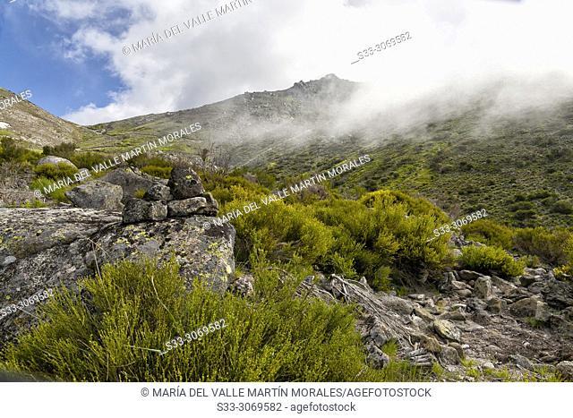 Fog at Eliza gorge in the Sierra de Gredos. Avila. Spain