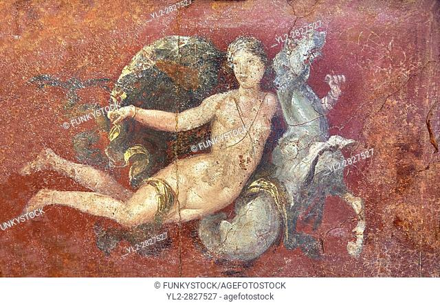 Roman fresco wall painting of a Nereid lying on a sea horse from the triclinium, a formal dining room, of the Villa Arianna (Adriana)