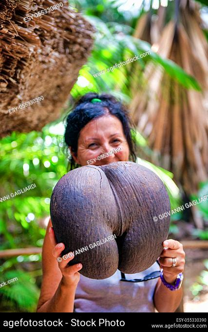 Happy woman holding famous coco de mer fruit in the Seychelles
