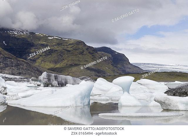 Fjallsárlón Lagoon, floating icebergs in the lagoon with glacier in background