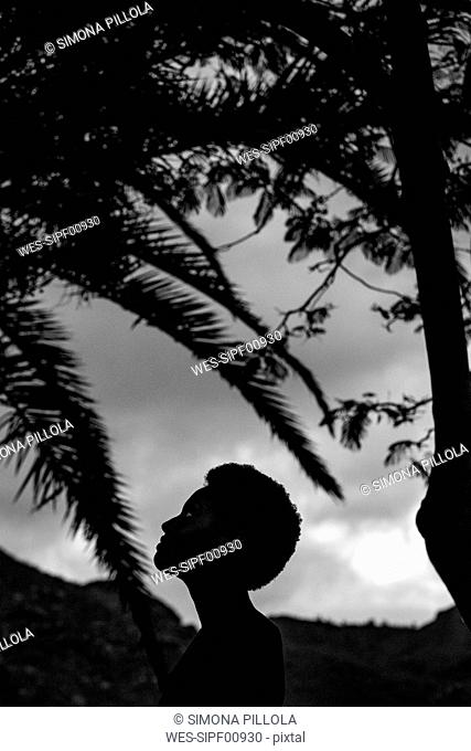 Silhouette of woman's head in nature