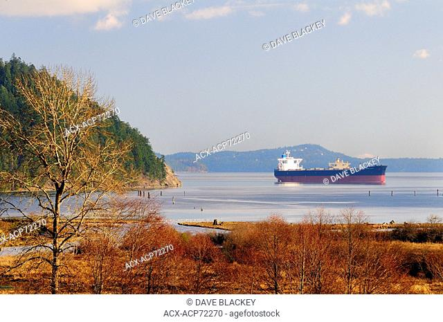 The freighter Zampa Blue is anchored in Cowichan Bay waiting for a call to the Port of Vancouver, BC