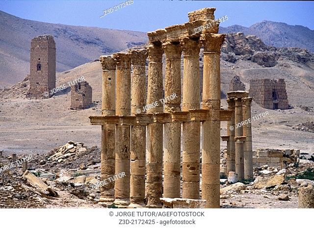 Great Colonnade and the Valley of the Tombs. Palmyra. Syria