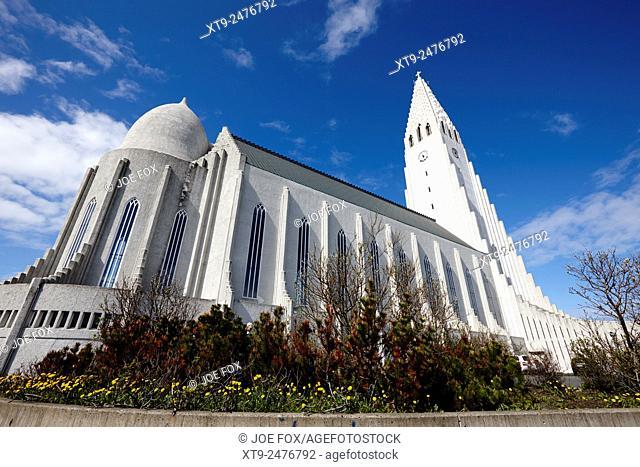 rear view of Hallgrimskirkja church Reykjavik church of iceland