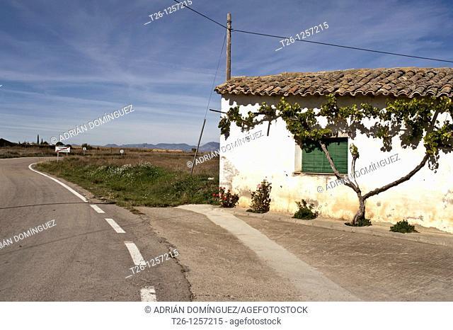 Road in the desert of Los Monegros. Aragón, Spain