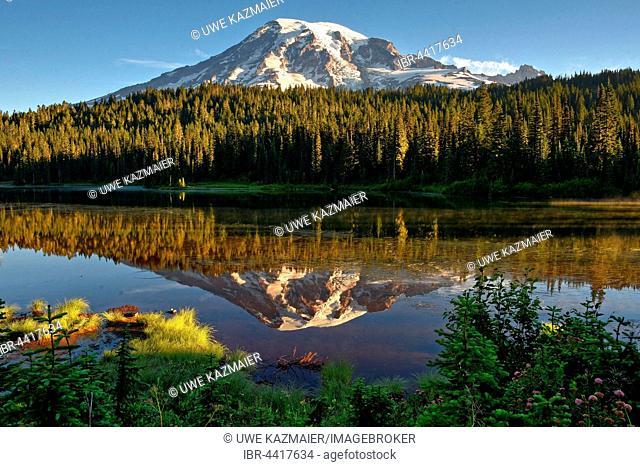 Reflection of Mount Rainier in Reflection Lake, Mount Rainier National Park, Cascade Range, Washington, Pacific Northwest, USA