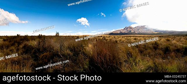 Panorama of the Central Plateau in the Rangipo Desert, New Zealand