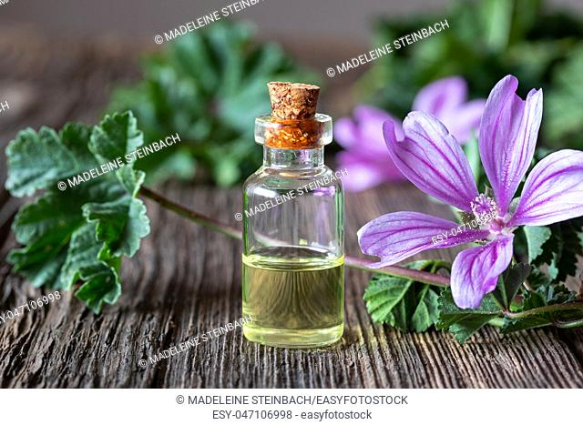 A bottle of common mallow essential oil with fresh malva sylvestris plant