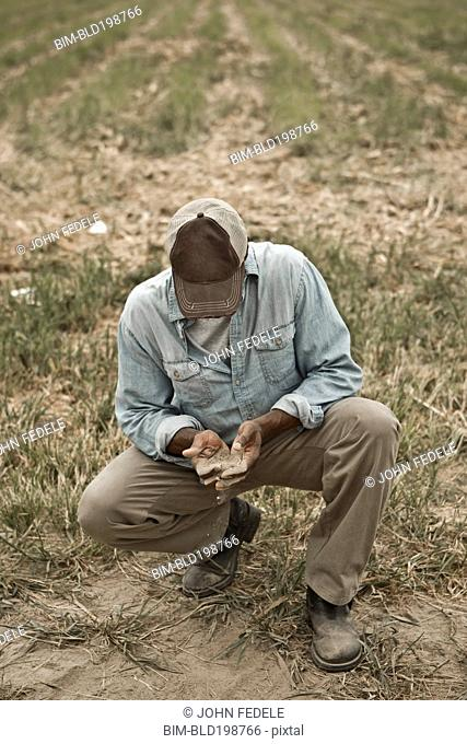 African American farmer checking dirt in field