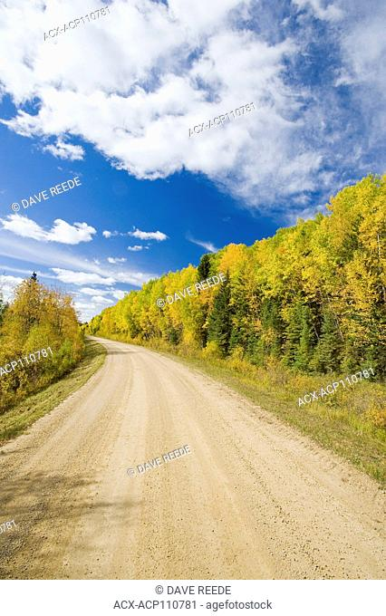 country road through boreal forest, Duck Mountain Provincial Park, Manitoba, Canada