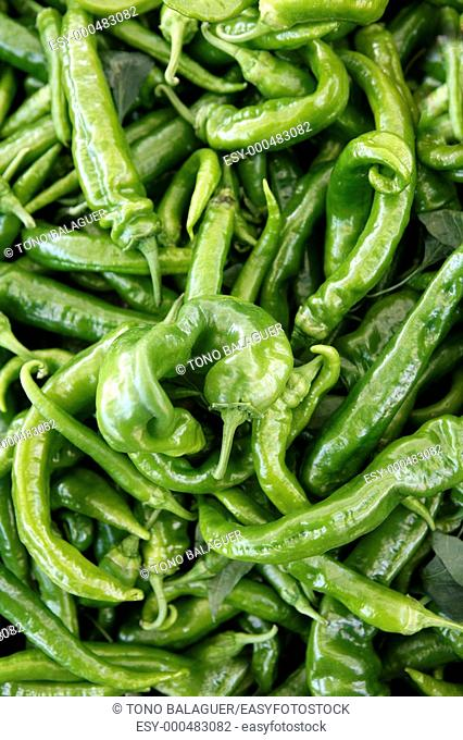 Green pepper texture in the marketplace macro pattern
