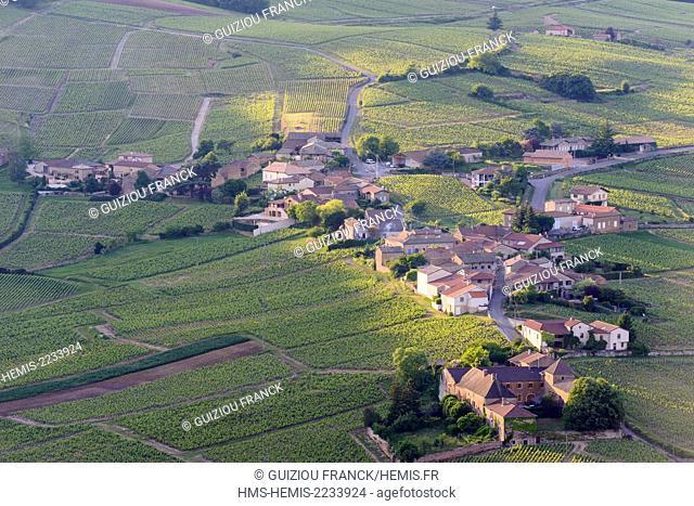 France, Saone et Loire, Maconnais vineyard, Vergisson village, view from the top of Solutre Rock