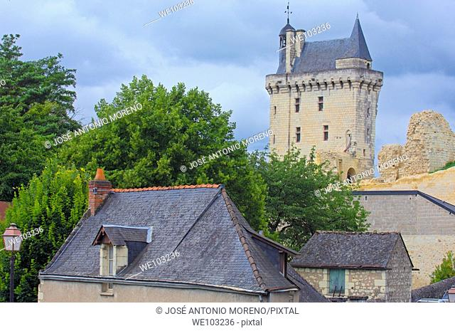Chinon Castle, Chinon, Indre-et-Loire, Loire Valley, France