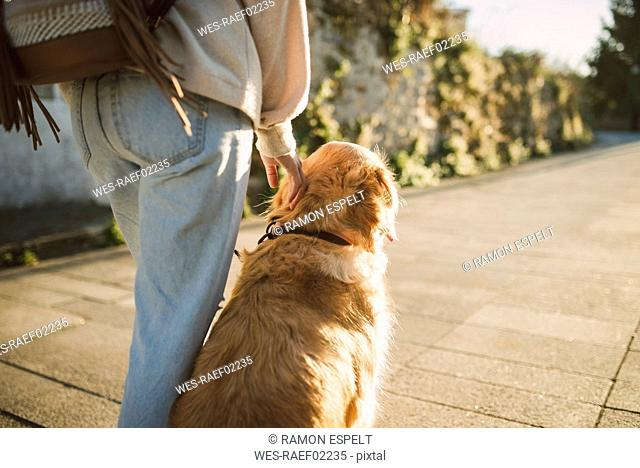 Woman with her golden retriever dog on a path
