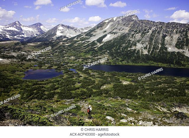 Hiking in the Charlotte Alplands within the Chilcotin region of British Columbia, Canada