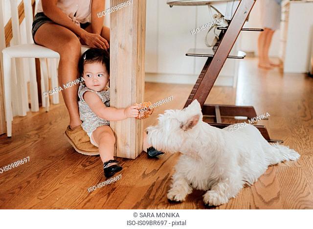 Girl sitting on floor near pet dog