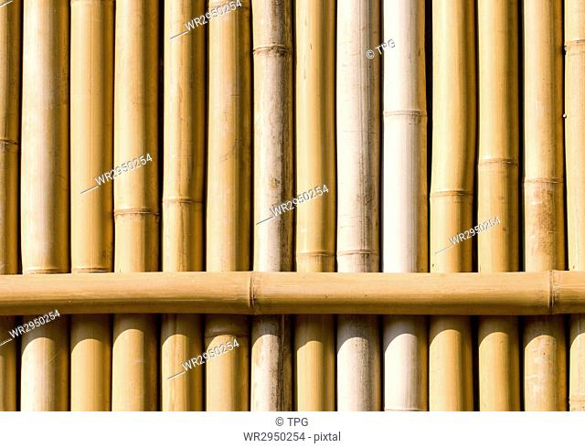 bamboo texture as wall, architecture decoration in asia
