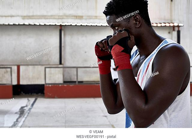 Portrait of boxer practicing
