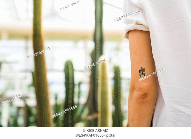 Cactus tattoo on young woman's arm
