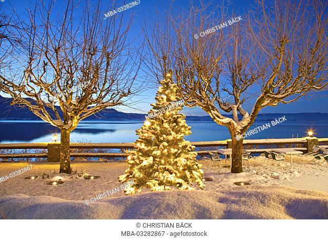 Christmas tree at the lake Kochelsee, terrace at the sea hotel 'Grauer Bär', Kochel am See, Upper Bavaria, Bavaria, Germany