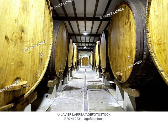 Cider tanks. Cider house, Urnieta, Gipuzkoa, Euskadi. Spain
