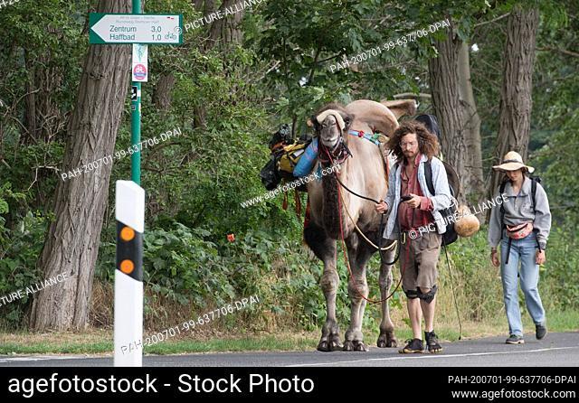 01 July 2020, Mecklenburg-Western Pomerania, Ueckermünde: Sebastien Arz and Alice Fiorzak are hiking with a camel through Ueckermünde