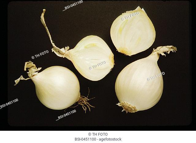 ONION<BR>White onions