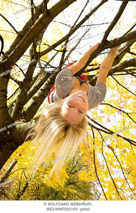 Austria, Young woman hanging on maple tree in autumn