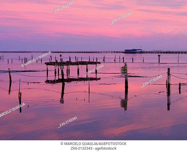 Alfacs Bay in winter twilight with mussel breeding platforms. Ebro River Delta Natural Park, Tarragona province, Catalonia, Spain