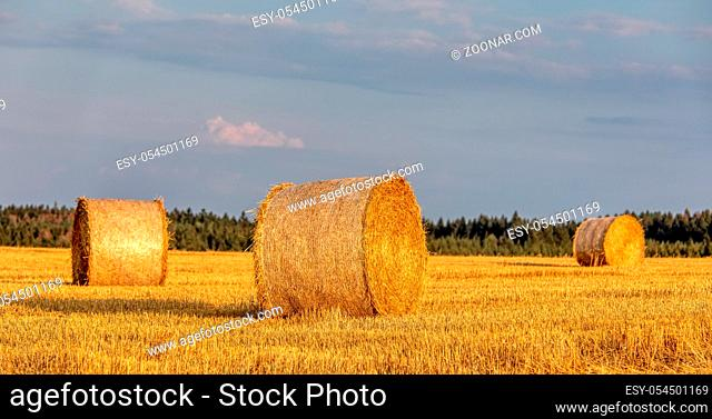 harvested field with straw bales in sunset, agriculture farming concept, Czech Republic, Europe