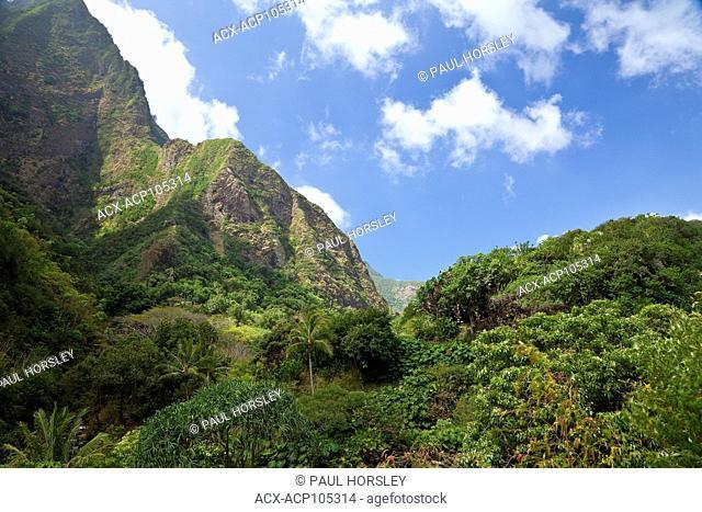 Lush rainforest and steep mountains. Iao Valley State Park, Maui, Hawaii