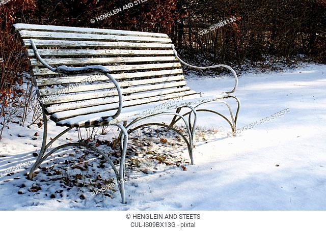 Empty bench on snowy ground