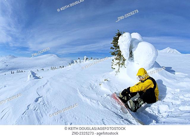 Snowboarder in alpine, Hudson Bay Mountain, Smithers, British Columbia