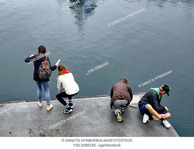 Icelandic people love to fish directly from waters of Atlantic Ocean, they don't even need a rod for fishing, they just fish using very simple tool - piece of...