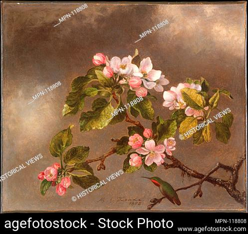 Hummingbird and Apple Blossoms. Artist: Martin Johnson Heade (1819-1904); Date: 1875; Medium: Oil on canvas; Dimensions: 12 3/16 x 14 1/8 in. (31 x 35