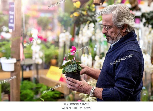 Man loking at flower at garden center