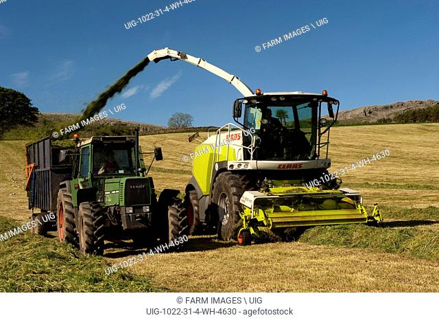 Claas 940 self propelled forage harvestor working in field. Filling trailers with chopped grass. Cumbria. (Photo by: Wayne Hutchinson/Farm Images/UIG)