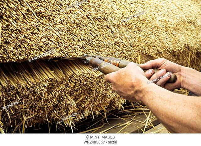 Close up of a thatcher trimming straw of a thatched roof with shears