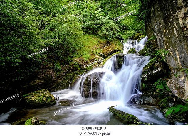 Tranquil forest waterfall, Ybbsitz, Austria