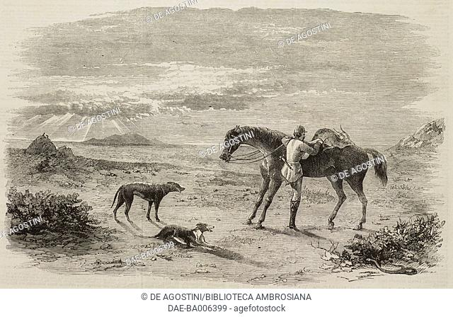 A hunter charging on horseback a killed antelope, two hunting dogs observing the scene, India, illustration from the magazine The Illustrated London News