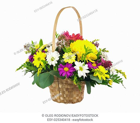 Flower bouquet from multi colored chrysanthemum and other flowers arrangement centerpiece in wicker basket isolated on white background