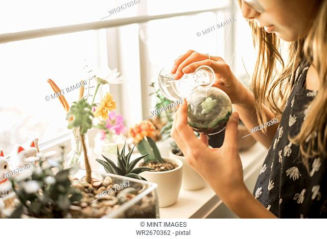 Girl tending plants on a sunny windowsill