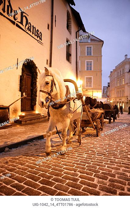 A Horse Carriage in front of Olde Hansa Restaurant