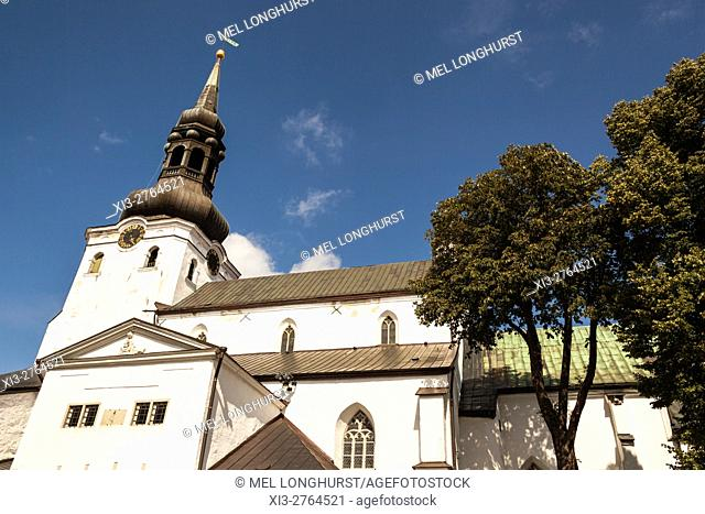 Cathedral of Saint Mary the Virgin, also known as Dome Church, Toompea Hill, Old Town, Tallinn, Estonia