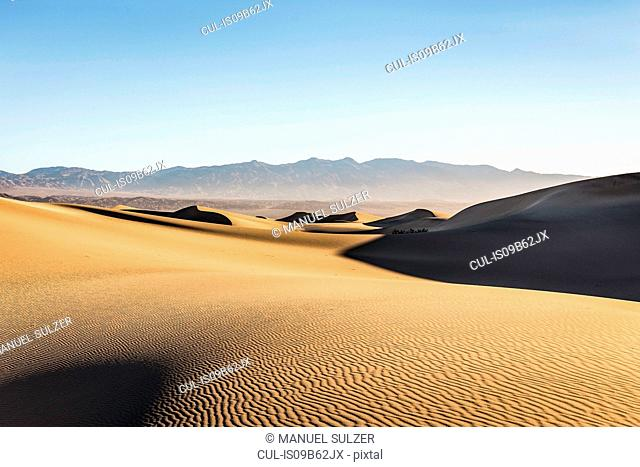 Rippled Mesquite Flat Sand Dunes in Death Valley National Park, California, USA