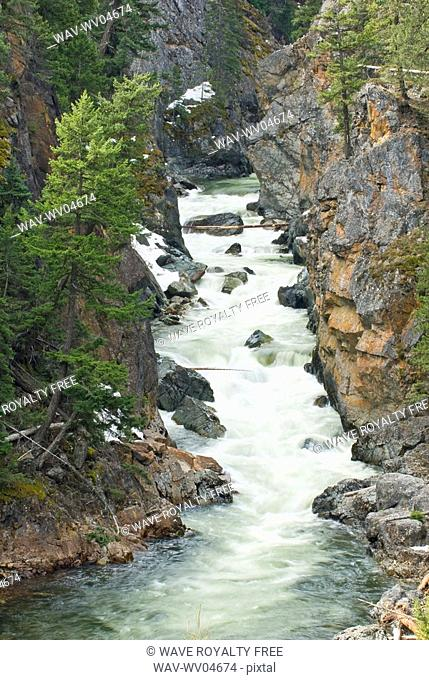 A river flows in Manning Provincial Park, BC