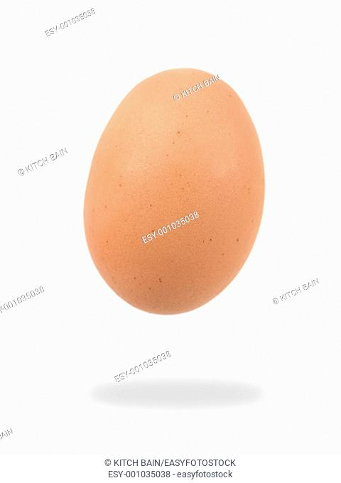 An egg isolated against a white background