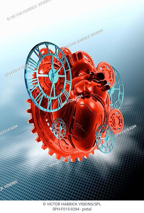 Mechanical heart, illustration