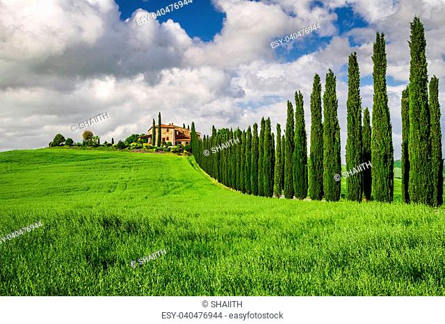 Agritourism in Tuscany with cypresses